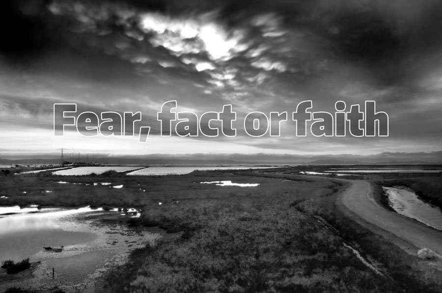 Fear-Fact-Faith